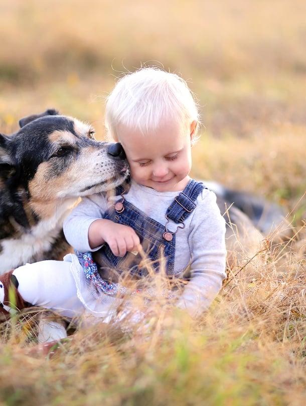 """Kun lapsi kasvaa, hänelle kannattaa sanoittaa koiran elekieltä ja opettaa, miten lemmikkiä lähestytään. Kuva: <span class=""""photographer"""">iStock</span>"""