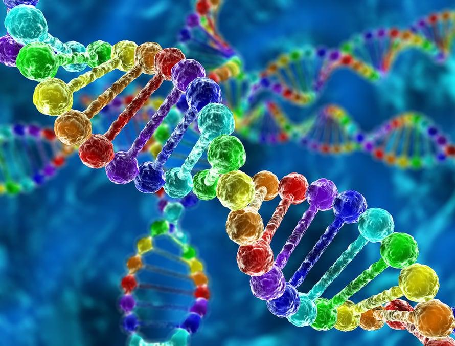 perinnöllisyys, geenit, DNA