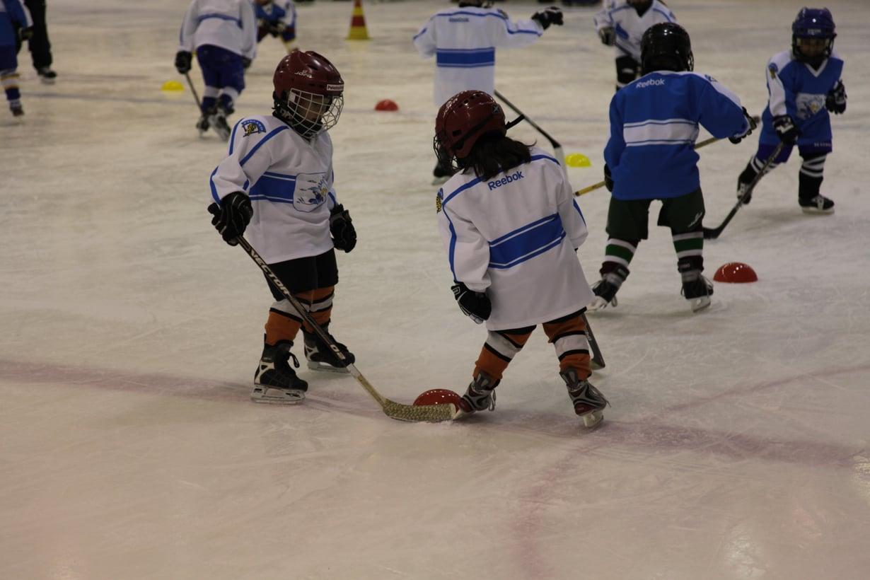 Jääkiekkoliiton mukaan kaikki raha, joka junioritoimintaan tulee kausi- ja seuramaksujen kautta, menee kokonaisuudessaan junioritoiminnan kehittämiseen. Kuva: Jääkiekkoliitto
