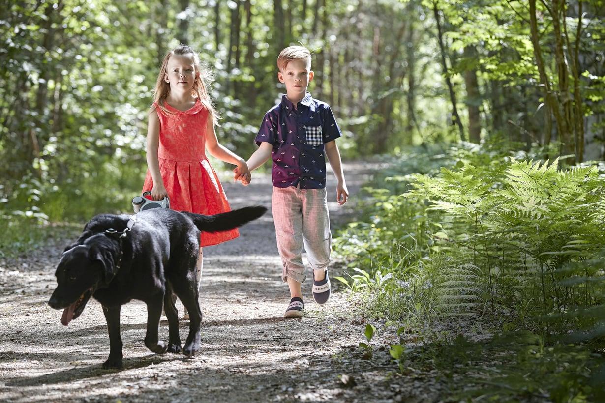 Kun kaksoset olivat vauvoja, Puntti-koira kiiruhti katsomaan heitä heti, kun itkuhälyttimistä kuului pienikin inahdus.