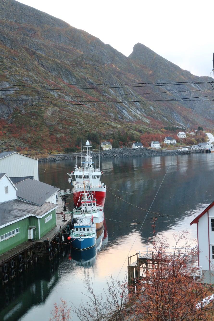 Kalastuksella on pitkät perinteet Lofoottien saarilla. Kaikkialla näkyy kalastusveneitä ja -laivoja sekä muun muassa turskan kuivatustelineitä.