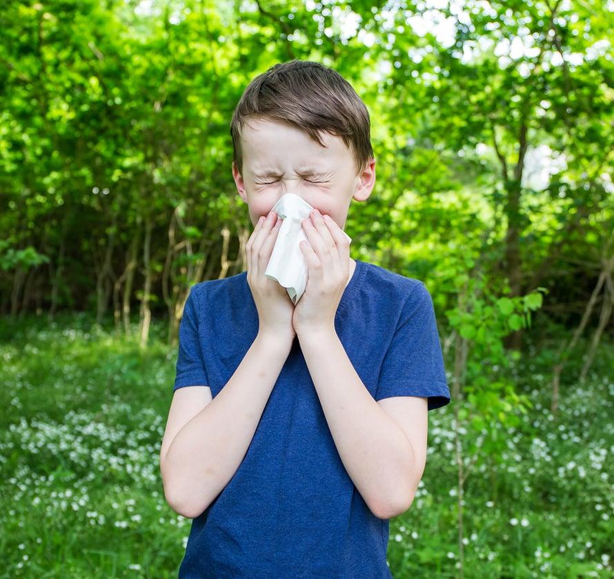 allergia, yliherkkyys, heinänuha