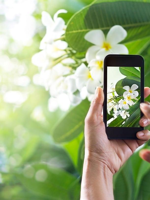 "Kuva: <span class=""photographer"">Shutterstock</span>"