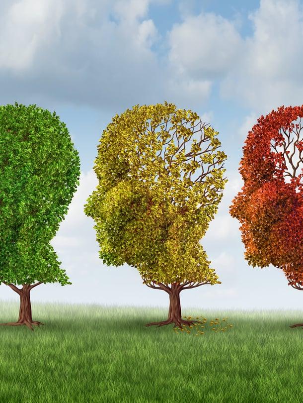 muisti, muistihäiriöt, Alzheimerin tauri, dementia