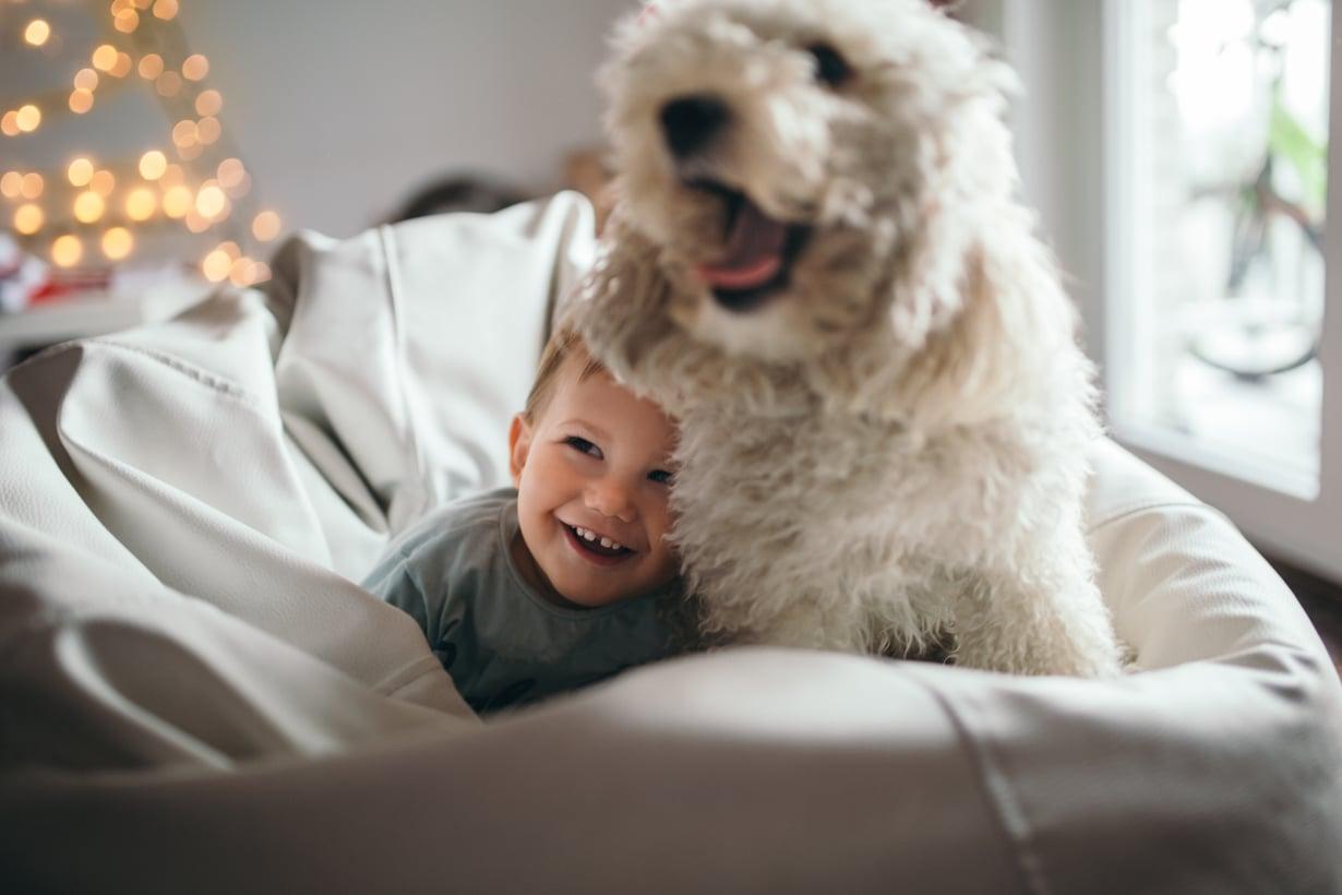 Toiset lapset reagoivat toisia herkemmin esimerkiksi eläinten äkkinäisiin liikkeisiin.