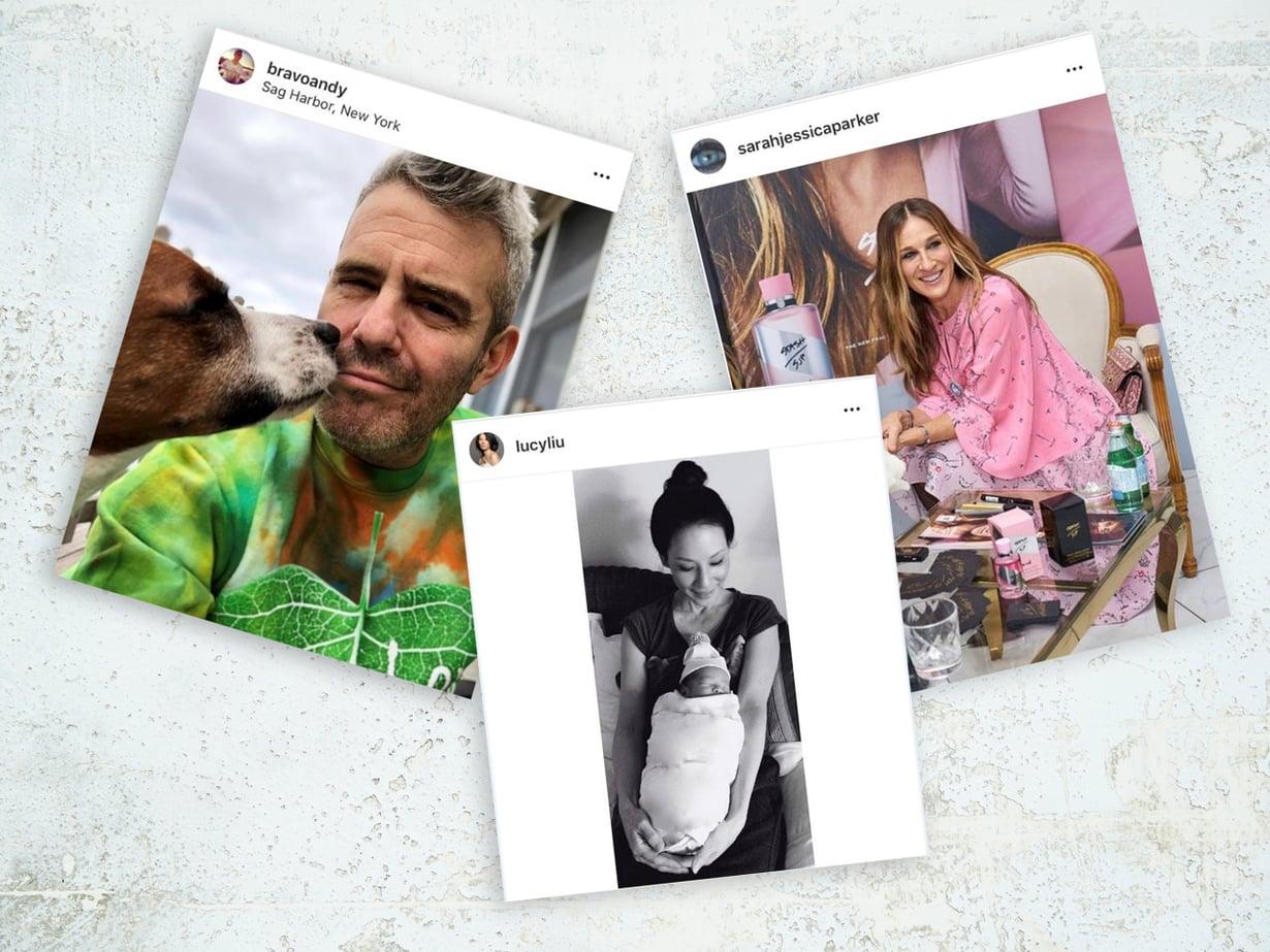 Juontaja Andy Cohenin esikoinen syntyy helmikuussa. Lucy Liu ja Sarah Jessica Parker ovat myös saaneet lapsia sijaissynnyttäjän avulla. Kuva: Instagram, Anna Huovinen