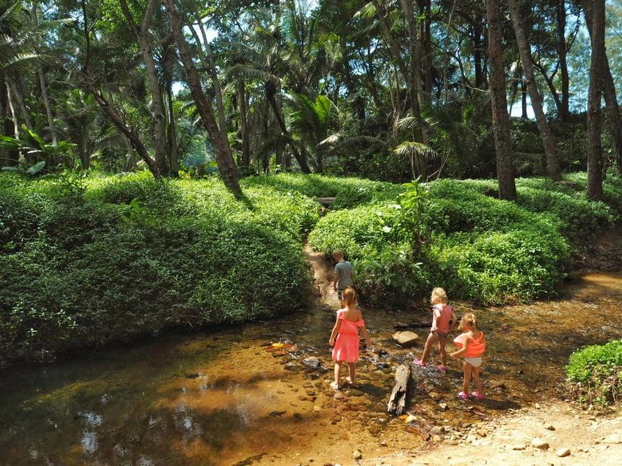 Matkakohteen luontoon, eläimiin ja ilmastoon kannattaa tutustua lasten kanssa jo ennen matkaa. Kuva: Inari Fernández