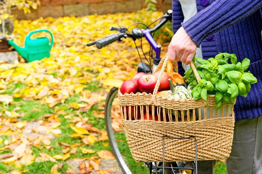 terveystekoja itselle, koko kansalle ja ympäristölle: kasvissyönti, polkupyöräily ja puun polton vähentäminen