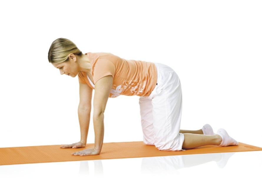 3. Kehonhallinta: Alkuasento Ole nelinkontin selkä neutraaliasennossa. Kädet painuvat alustaan hartioiden leveydellä ja polvet lantion leveydellä. Niska on suoraan vartalon jatkeena. Hengitä ulos ja tiivistä vatsa. Hengitä sisään ja pidä vatsa koko ajan tiiviinä. Pysy asennossa 5–10 sisään- ja uloshengityksen ajan.  Liike harjoittaa syvää poikittaista vatsalihasta ja kehonhallintaa.
