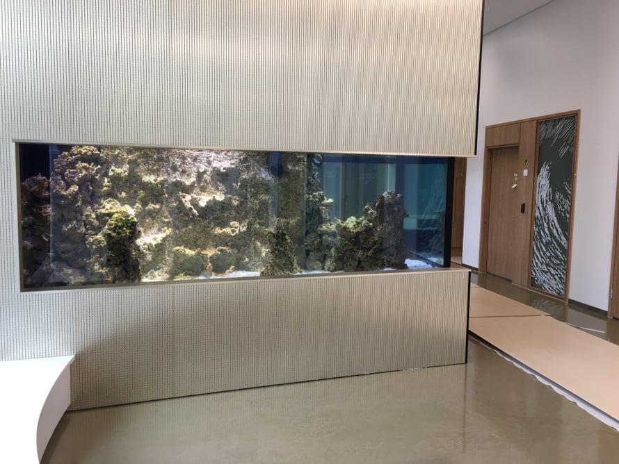 Laboratorion odotustiloissa on meriakvaario, jonka toisella puolella on sisarushuone testeihin tulevan lapsen perheenjäsenille.